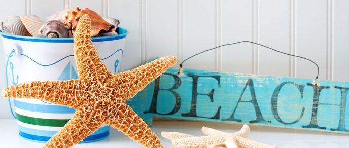 Beach Starfish Shells